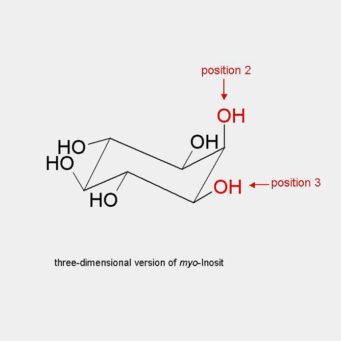 3-D myo-Inosit